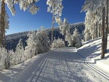 Percorso della neve per sci di fondo Fotografia Stock Libera da Diritti