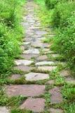 Percorso della pietra facente un passo Fotografia Stock