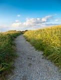 percorso delle dune Fotografie Stock