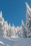 Percorso dello Snowy Immagini Stock Libere da Diritti