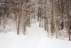 Percorso dello Snowy Fotografia Stock Libera da Diritti
