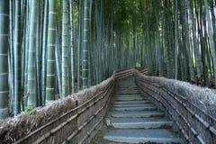 Percorso di bambù Fotografie Stock Libere da Diritti