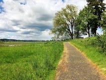 Percorso di camminata dell'Oregon Immagini Stock Libere da Diritti