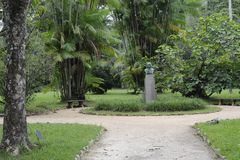 Percorso di camminata in giardino botanico di Rio de Janeiro, Brasile Immagini Stock