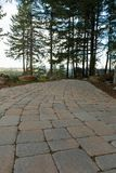 Percorso di camminata di pietra del lastricatore del mattone del giardino Immagini Stock Libere da Diritti