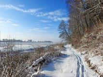 Percorso di camminata vicino al fiume Nemunas, Lituania Immagini Stock Libere da Diritti