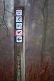 Percorso di indicazioni nel palo di orientamento della foresta Traccia del prato Immagine Stock