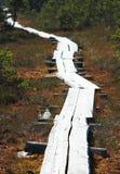 Percorso di legno Fotografie Stock Libere da Diritti