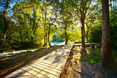 Percorso di legno del fiume della foresta di Krka fotografia stock