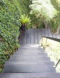 Percorso di legno del sentiero costiero Fotografie Stock