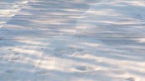 Percorso di legno del sentiero costiero sulla spiaggia sabbiosa Tracce di animali e di gente sulla sabbia video d archivio