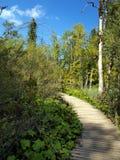Percorso di legno in parco nazionale in Plitvice fotografie stock