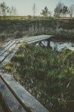 Percorso di legno sopra il piccolo stagno in giardino in molla in anticipo Fotografie Stock