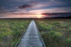 Percorso di legno sulla palude e sul tramonto Fotografie Stock
