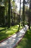 Percorso di pietra con erba ed alberi nel giardino Immagine Stock