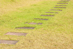 Percorso di pietra della passeggiata del blocco Fotografie Stock