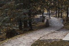 Percorso di pietra fra gli alberi di autunno nel parco nazionale immagine stock