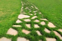 Percorso di pietra nella struttura del giardino dell'erba verde Fotografia Stock Libera da Diritti
