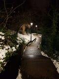 Percorso di Snowy alla notte Immagine Stock