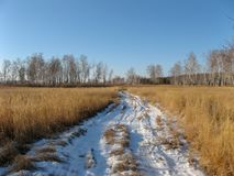 Percorso di Snowy dal giacimento di grano in Siberia, Russia La strada nevosa in natura siberiana a gennaio fotografia stock libera da diritti