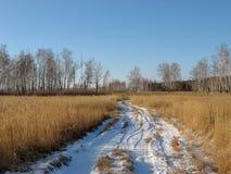 Percorso di Snowy dal giacimento di grano in Siberia, Russia La strada nevosa in natura siberiana a gennaio immagini stock
