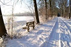 Percorso di Snowy nel legno. Fotografia Stock Libera da Diritti