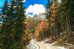 Percorso di trekking in un giorno di autunno nelle alpi Immagine Stock Libera da Diritti