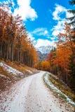 Percorso di trekking in un giorno di autunno nelle alpi Immagine Stock