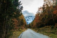 Percorso di trekking in un giorno di autunno nelle alpi Fotografie Stock Libere da Diritti
