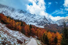 Percorso di trekking in un giorno di autunno nelle alpi Immagini Stock