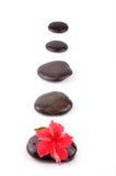 Percorso di zen Fotografie Stock Libere da Diritti