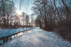 Percorso e fiume di Snowy attraverso la foresta al tramonto fotografia stock libera da diritti