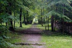 Percorso fatto un passo nel parco verde Fotografia Stock