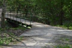 Percorso in foresta con il ponte e le riflessioni del sole fotografia stock
