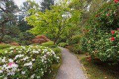 Percorso giapponese del giardino in primavera Fotografia Stock