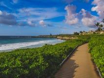 Percorso isolato della spiaggia di Oneloa Immagini Stock
