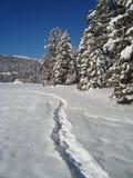 Percorso nella neve Fotografie Stock