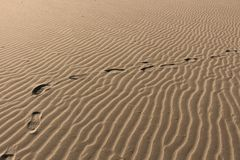 Percorso nella sabbia Fotografia Stock