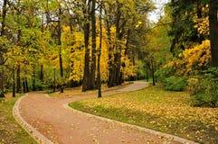 Percorso nella sosta di autunno Fotografia Stock