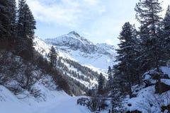 Percorso nevoso invernale con gli alberi e montagna in montagne delle alpi di Stubai Fotografia Stock