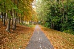 Percorso pavimentato vuoto coperto parzialmente in foglie in autunno immagini stock