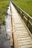 Percorso pedonale sui pali di legno Immagine Stock
