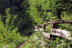 Percorso in primavera nelle montagne della Romania Immagini Stock Libere da Diritti