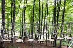Percorso provocatorio nella foresta di avventura fotografia stock