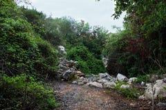 Percorso roccioso scenico un giorno soleggiato nella valle di Babu & in x28; Weid Babu& x29; , Zurrieq, Malta Scena splendida pit Fotografia Stock