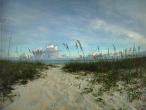 Percorso sabbioso attraverso le dune al mare immagini stock