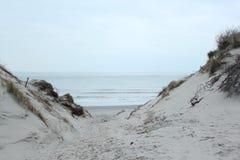 Percorso sabbioso che passa attraverso le dune sulla costa del Mare del Nord immagini stock libere da diritti