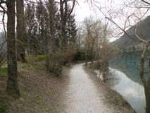 percorso sabbioso lungo il lago con molti alberi fotografia stock