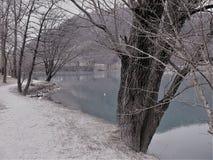 percorso sabbioso lungo il lago con molti alberi immagine stock
