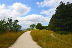 Percorso sabbioso, passante su attraverso un prato di erba gialla e verde circondata dagli alberi immagine stock libera da diritti